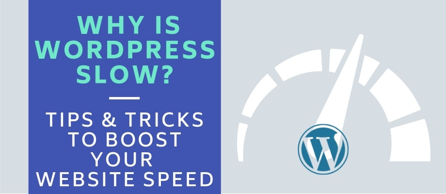 Why Is Wordpress Slow? Site Speed Optimization