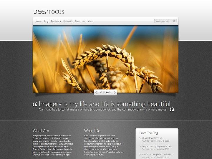 ElegantThemes DeepFocus Theme