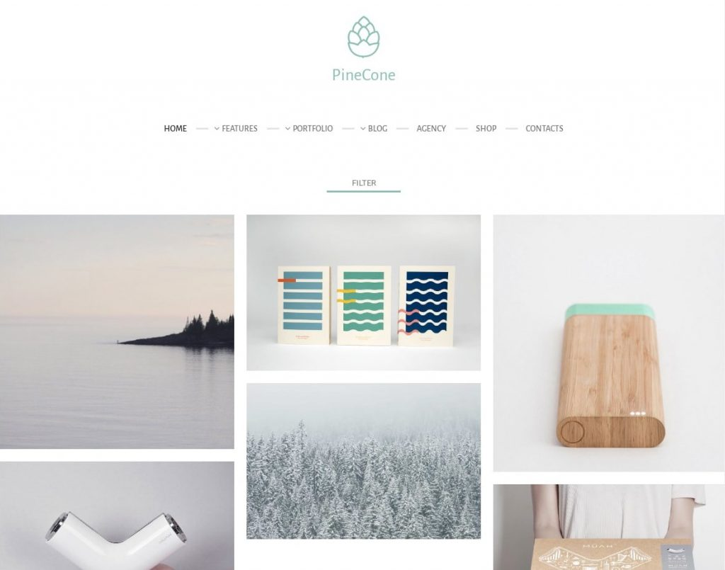 PineCone WordPress Theme